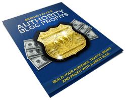Authority Blog Profits Report